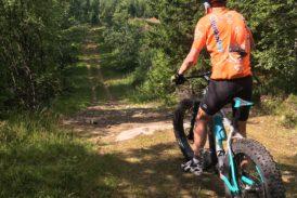 Viikko 14: Hiihto, pyöräily tai vesijuoksu vaihtoehtoisena harjoituksena