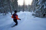 Viikko 52: Pitkä lumirymy