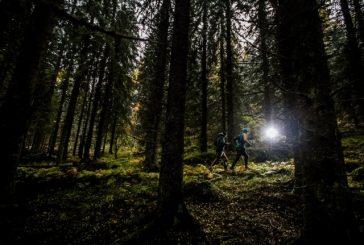 Kestävyysurheilijat kohtaavat Kolilla – Mäkäräinen ja Teini polkujuoksussa